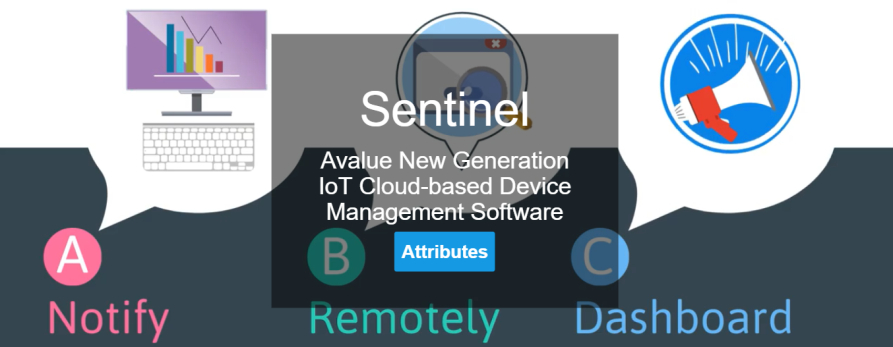 Sentinel - Avalue new generation IoT cloud-based device